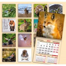 Календарь на скрепке - Живой мир