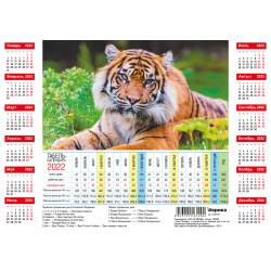 Новая коллекция календарей на 2022 год