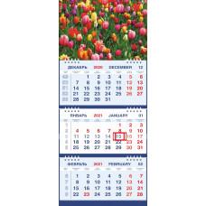 Календарь МАЛОЕ ТРИО - Тюльпаны