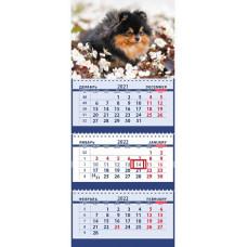 Озорной черно-подпалый померанский шпиц в летних цветах