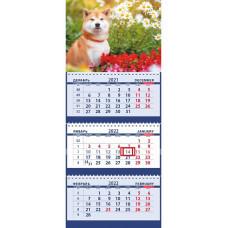 Собака шиба-ину у цветочной клумбы