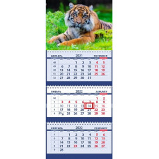 Тигр в зеленой траве