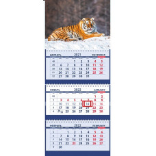 Сибирский тигр на заснеженном холме