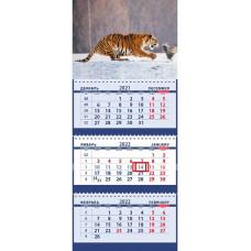 На заснеженной поляне сибирский тигр и цесарка