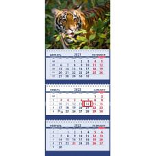 Тигр в дикой природе среди листвы